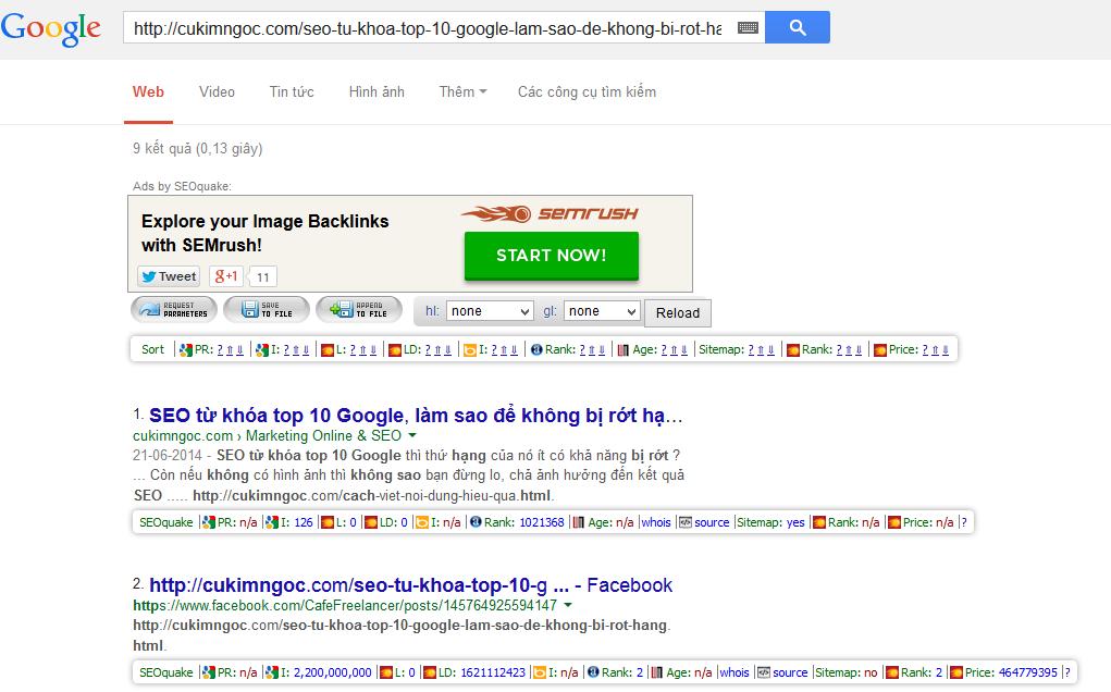 Kiểm tra tình trạng index của liên kết trên Google Search Engine